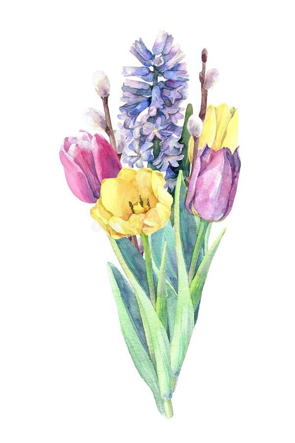 Härlig bukett av vårblommor - tulpan, pilfilialer och hyacint stock illustrationer
