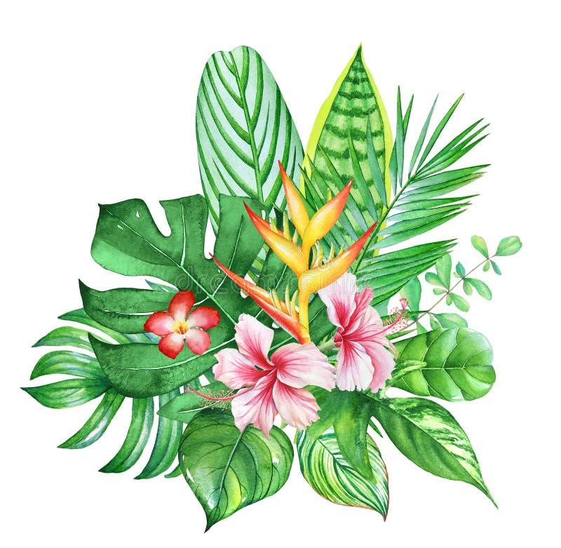 Härlig bukett med växter och blommor för vattenfärg tropiska stock illustrationer