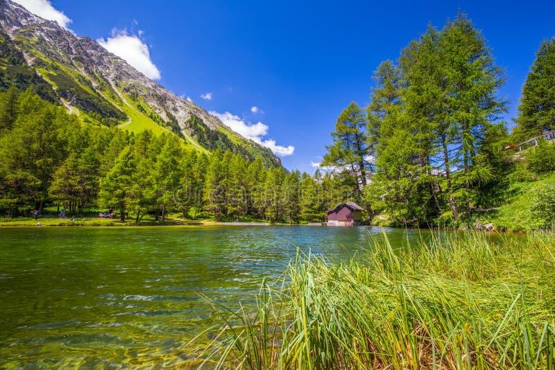 Härlig chalet på Palpuognasee i schweiziska fjällängar, Albulapass royaltyfria bilder