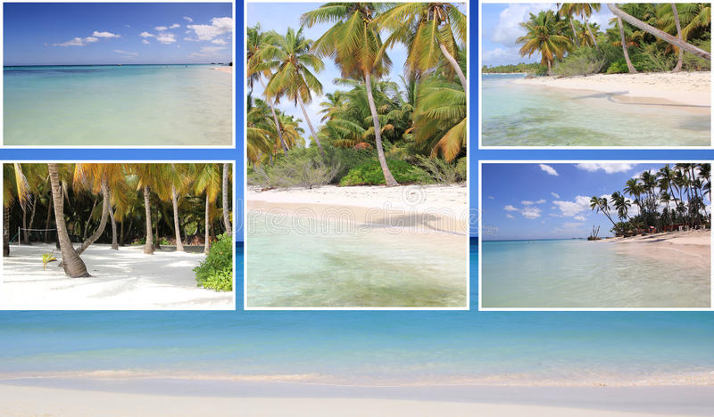 Härlig collage av tropiska bilder, strand, palmträd arkivbild