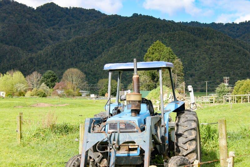 Härlig dag på en lantgård i nordostlig nyazeeländsk ` s arkivfoton