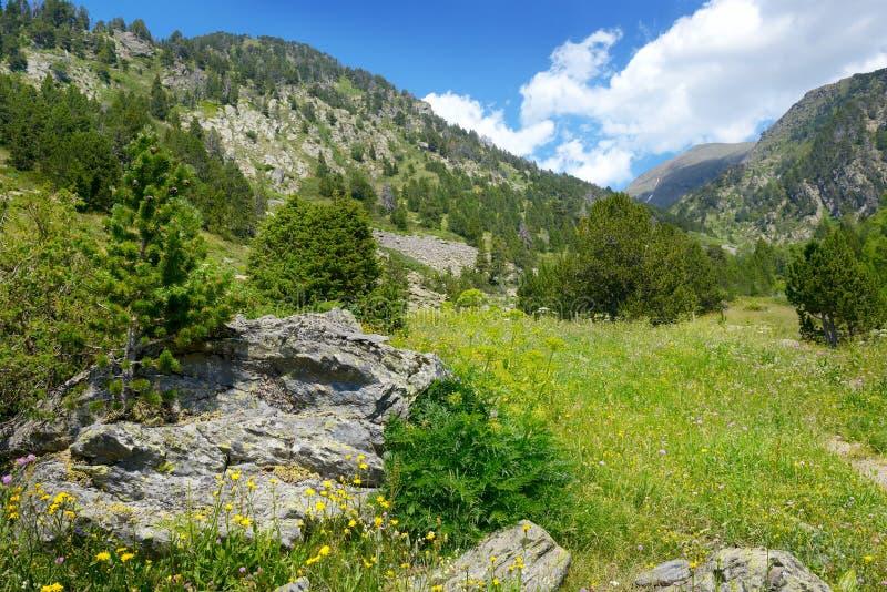 Härlig dal och blå himmel i Andorra stora liggandebergberg royaltyfria bilder