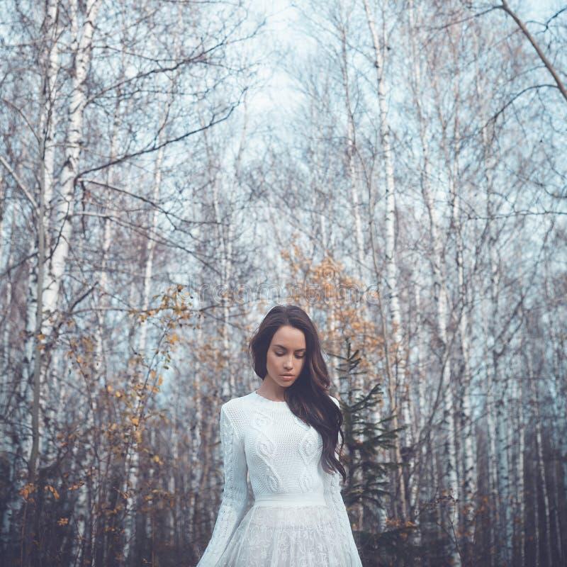 Härlig dam i en björkskog fotografering för bildbyråer