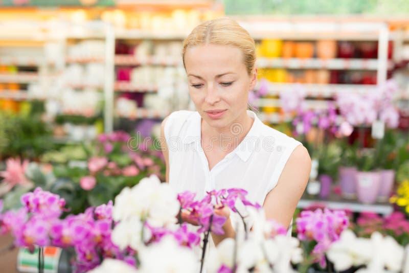 Härlig dam som luktar färgrika blommande orkidér arkivfoto