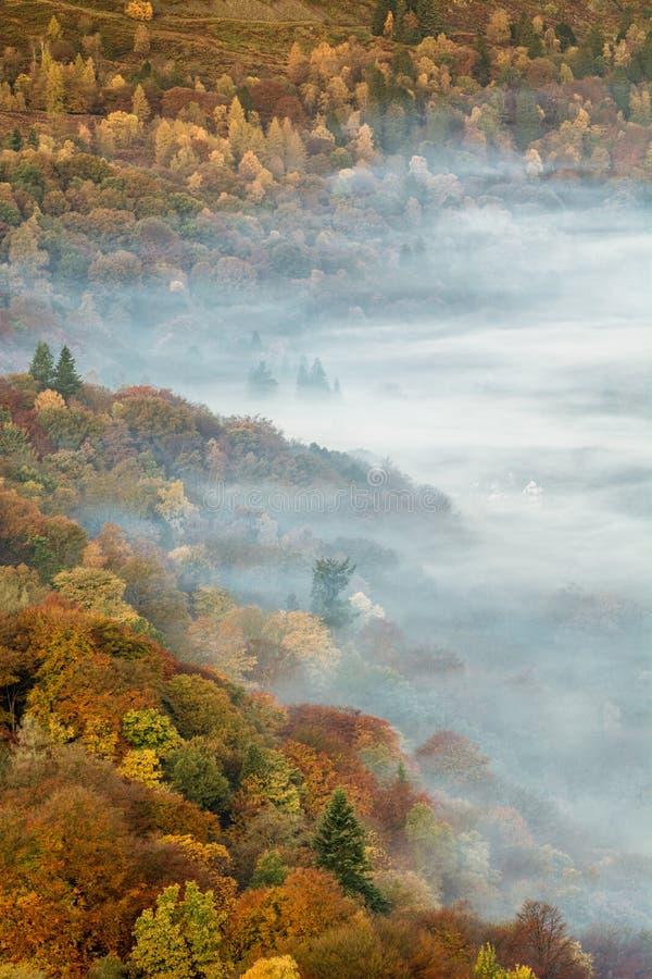 Härlig dröja sig kvar dimma över Grasmere sjön med höstliga färger i träd arkivbild