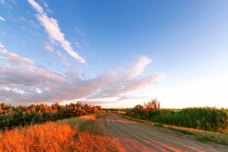 Härlig dramatisk himmel på solnedgången i de orange strålarna av sommaren och bygdvägen som sträcker in i avståndet Tr?d och? lav arkivfoton