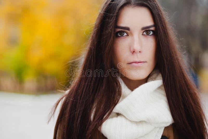 Download Härlig Elegant Kvinna. Höst Fotografering för Bildbyråer - Bild av lövverk, green: 27281021