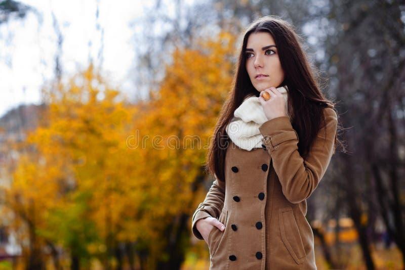 Download Härlig Elegant Kvinna. Höst Fotografering för Bildbyråer - Bild av livsstil, fritid: 27281143
