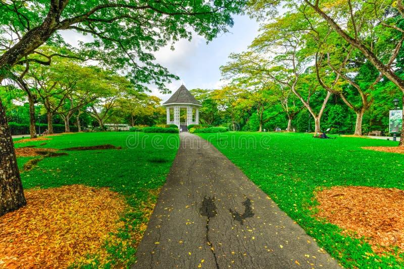 Härlig estrad på Singapore botaniska trädgårdar royaltyfri foto