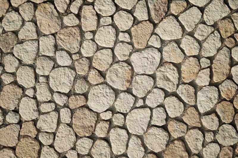 Härlig exakt texturerad tegelstenvägg på ljus solig dag royaltyfri fotografi