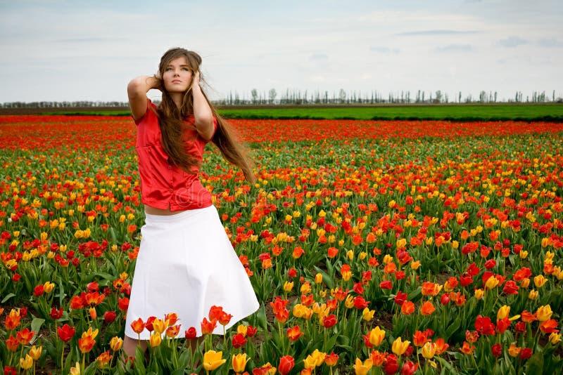 härlig fälttulpankvinna fotografering för bildbyråer