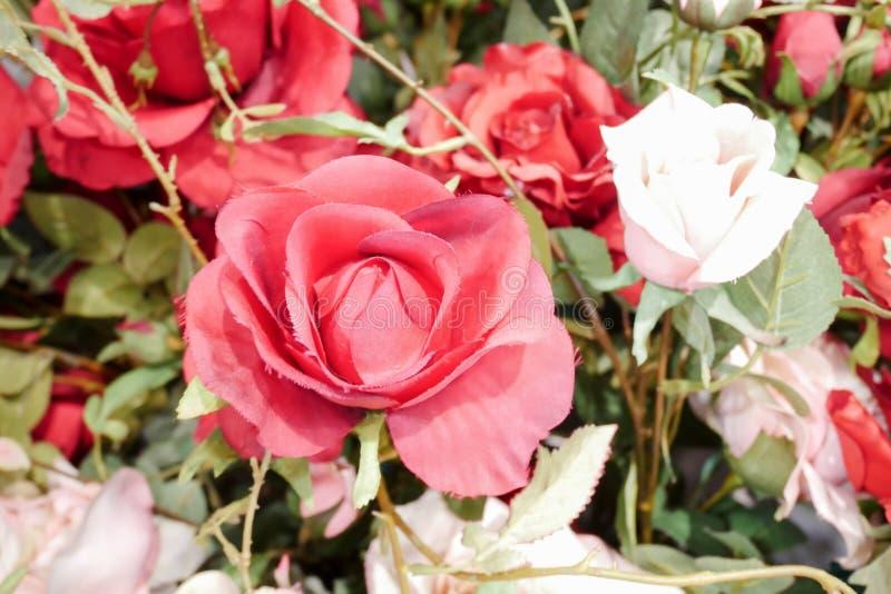 Härlig färgrik blommaväggbakgrund, blommor som göras av tyg royaltyfri foto