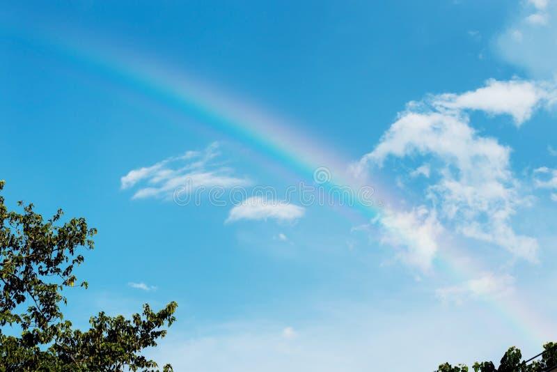 Härlig färgrik regnbåge på blå himmel arkivbild