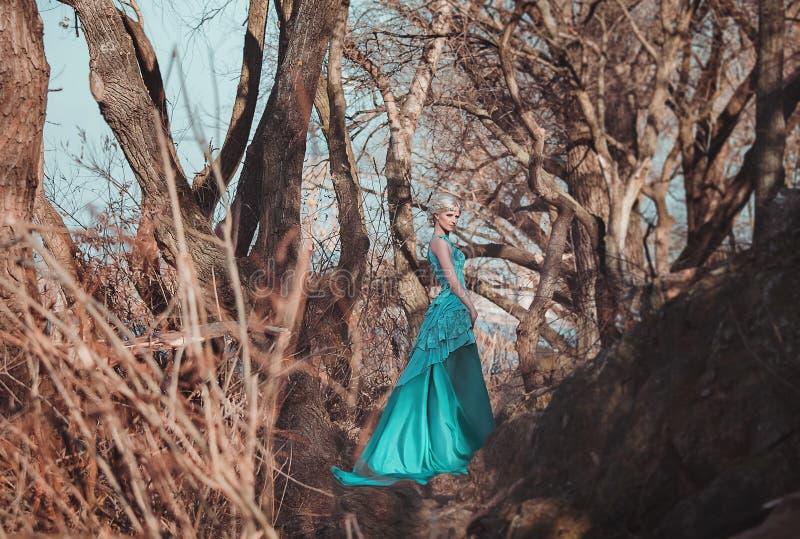 Härlig fe i en lång turkosklänning arkivbilder