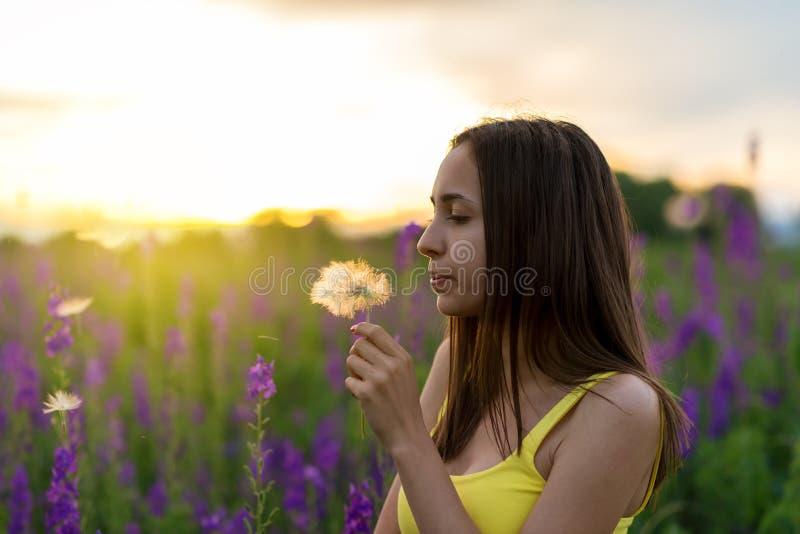 Härlig flicka bland lupinen arkivfoton