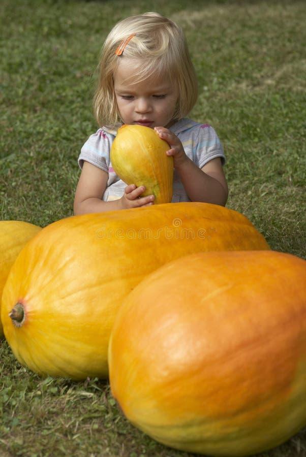Härlig flicka för liten unge som har gyckel med lantbruk på organisk pumpalapp royaltyfri bild