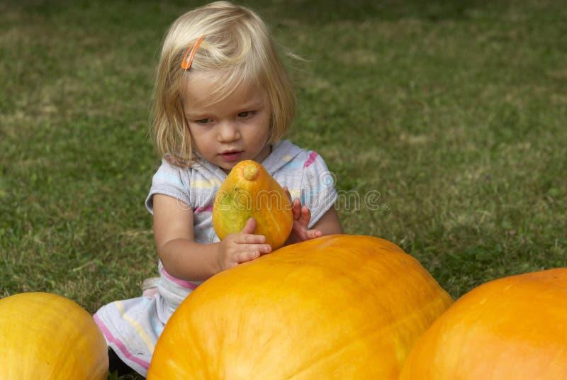 Härlig flicka för liten unge som har gyckel med lantbruk på organisk pumpalapp royaltyfri foto