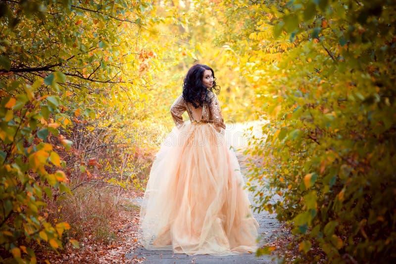 Härlig flicka i en lyxig klänning arkivfoton