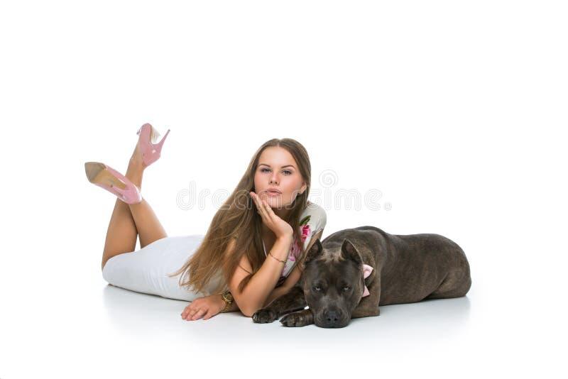 Härlig flicka med den gråa staffordterriern royaltyfri foto