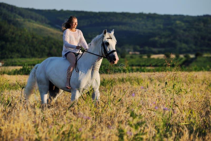Härlig flicka med den vita hästen i fält fotografering för bildbyråer