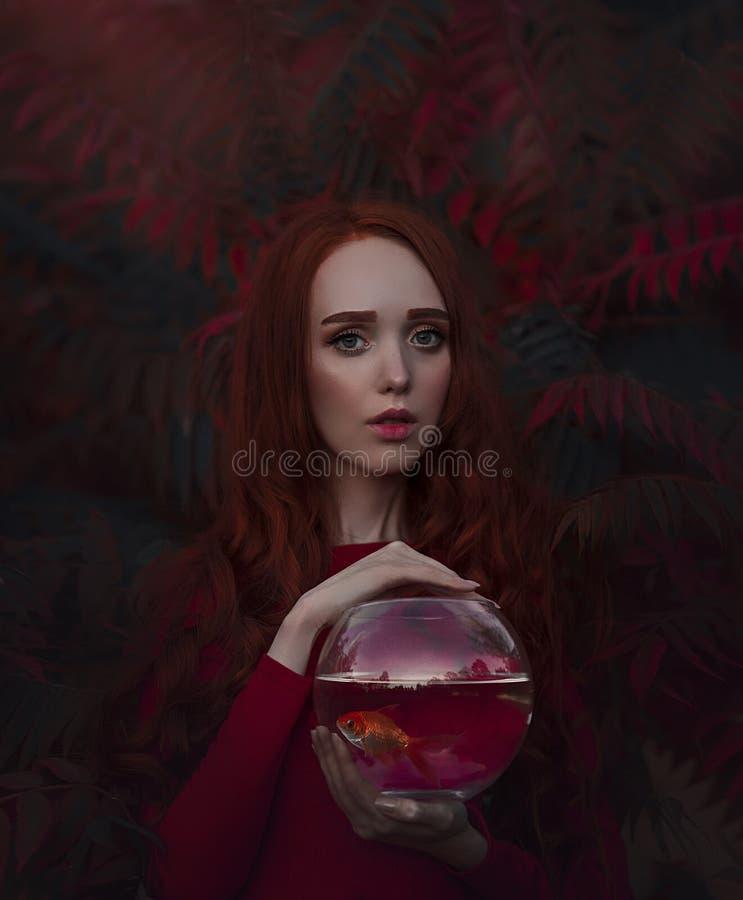 Härlig flicka med långt rött hår med en guldfisk i akvariet Stående av en ung rödhårig kvinna i hösten arkivfoton