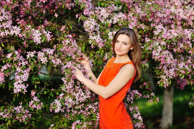 Härlig flicka med rött hår i vårträdgård royaltyfria foton