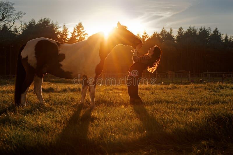 Härlig flicka och häst på solnedgången royaltyfria bilder