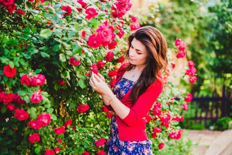 Härlig flicka och röda rosor arkivfoton