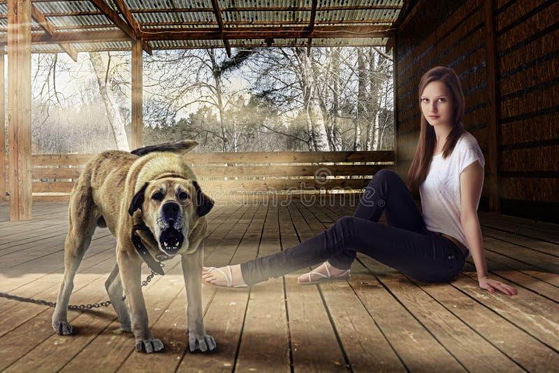 Härlig flicka och skällavakthund utomhus på träverandan arkivbild