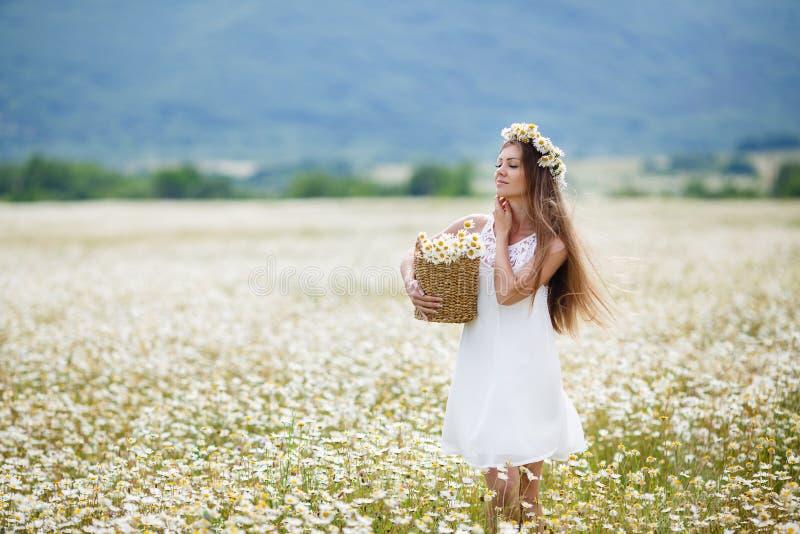 Härlig flicka på kamomillfältet arkivfoto