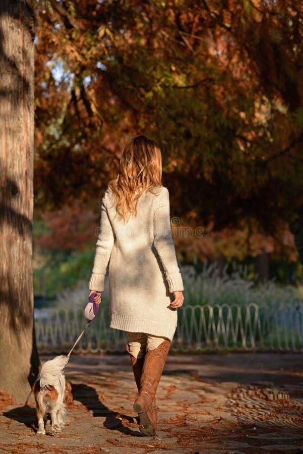 Härlig flicka som går hennes stolta konung Charles Spaniel för hund i parkera royaltyfri fotografi