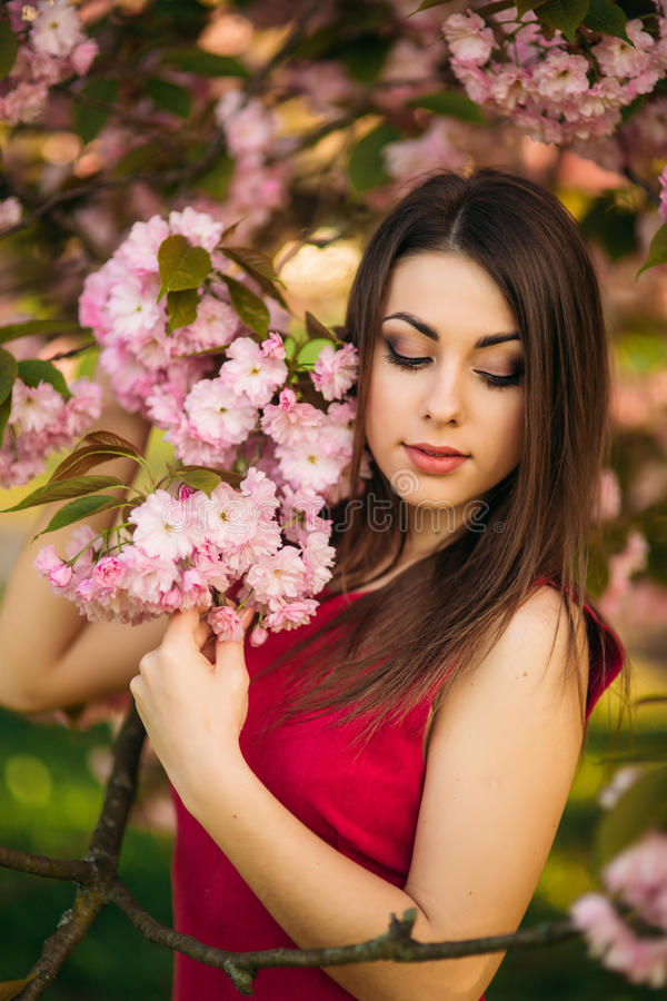 Härlig flicka som poserar till fotografen mot bakgrunden av blommande rosa träd Vår Sakura royaltyfri fotografi