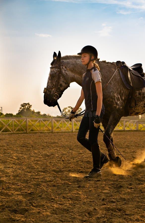 Härlig flickajockeyställning bredvid hennes häst som bär den speciala likformign på en himmel och grön fältbakgrund på en solnedg royaltyfri bild