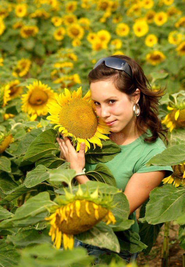 härlig flickasolros fotografering för bildbyråer