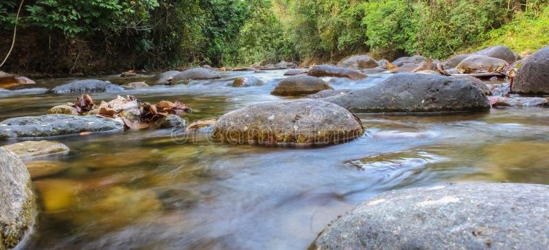 flod i venezuela