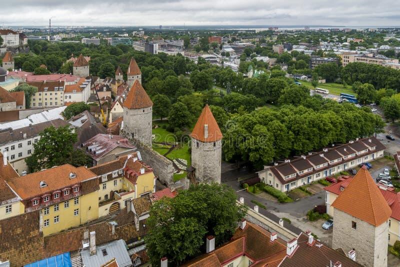Härlig flyg- sikt av de medeltida tornen av Tallinn, Estland, uppifrån av tornet för kyrklig klocka för ` s för St Olav royaltyfria foton
