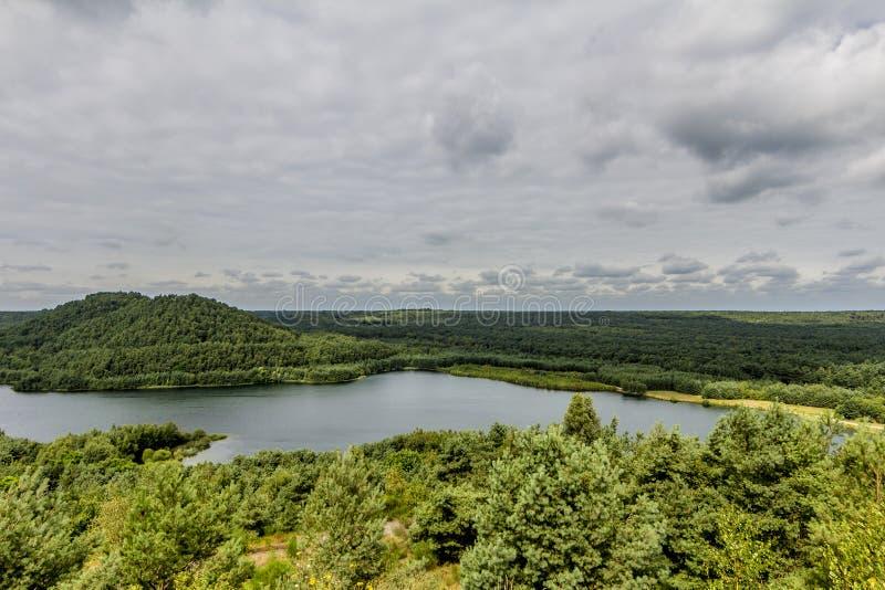 Härlig flyg- sikt av en sjö med många träd och en grå skarp reflexion för himmel och av den i vattnet arkivfoto