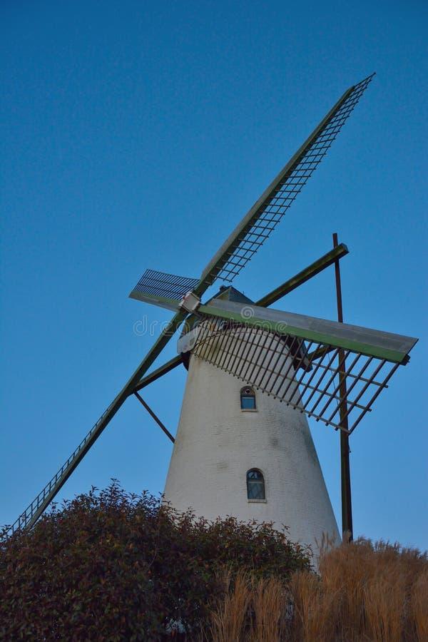 Härlig forntida flemish väderkvarn royaltyfria bilder