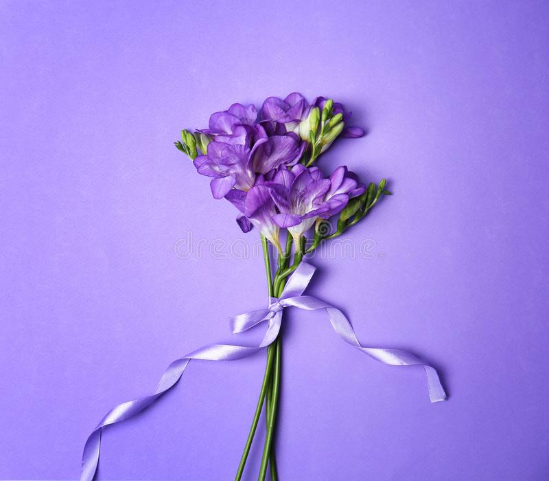 Härlig freesia blommar med bandet fotografering för bildbyråer