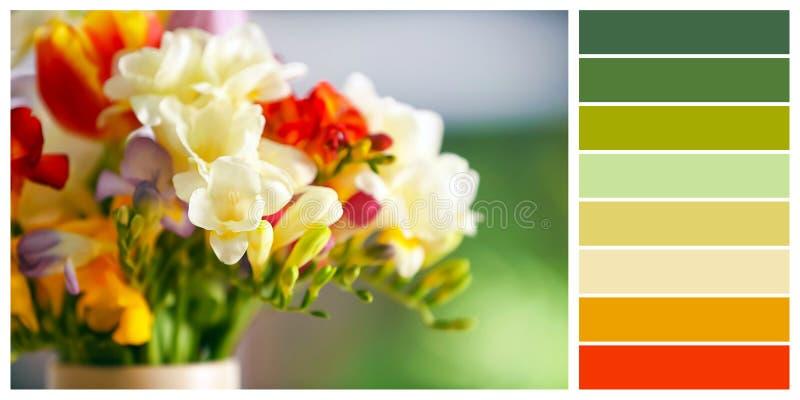 Härlig freesia blommar på suddig bakgrund fotografering för bildbyråer