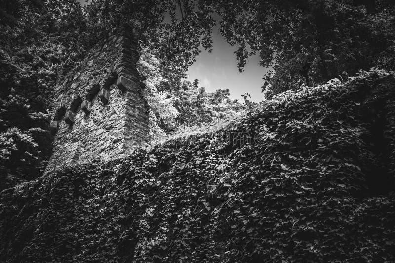Härlig gammal slott i svartvitt fotografering för bildbyråer