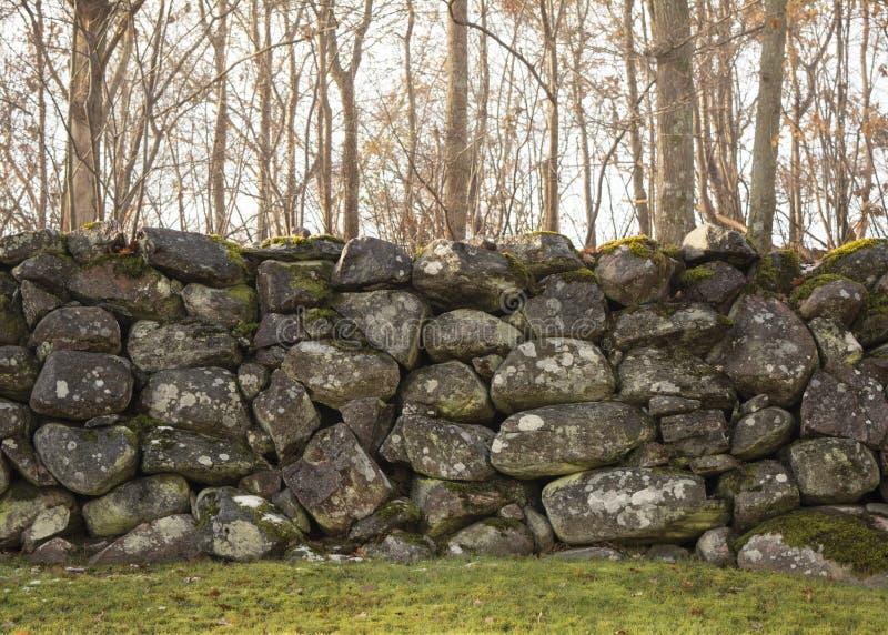 Härlig gammal stenvägg framme av den höst-/vinterskogen royaltyfri foto