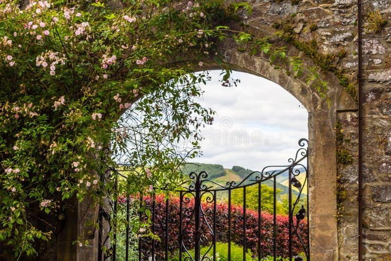 Härlig gammal trädgårds- port med murgrönan och klättringrosor royaltyfri foto