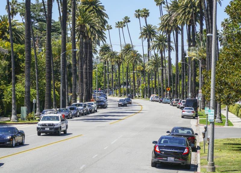 Härlig gatasikt med palmträd i Beverly Hills - LOS ANGELES - KALIFORNIEN - APRIL 20, 2017 royaltyfri fotografi