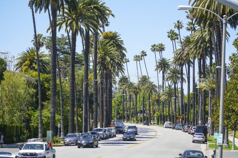 Härlig gatasikt med palmträd i Beverly Hills - LOS ANGELES - KALIFORNIEN - APRIL 20, 2017 fotografering för bildbyråer