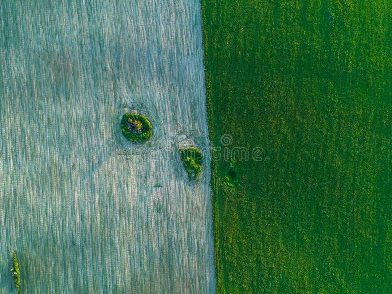 Härlig geometri av fält gör grön och bryner fotoet från höjd fotografering för bildbyråer