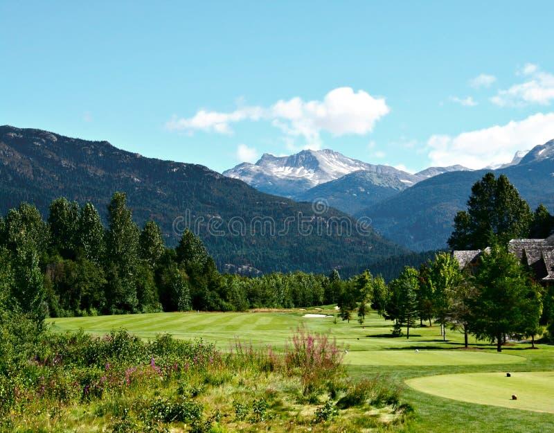 härlig golfcourse royaltyfri foto