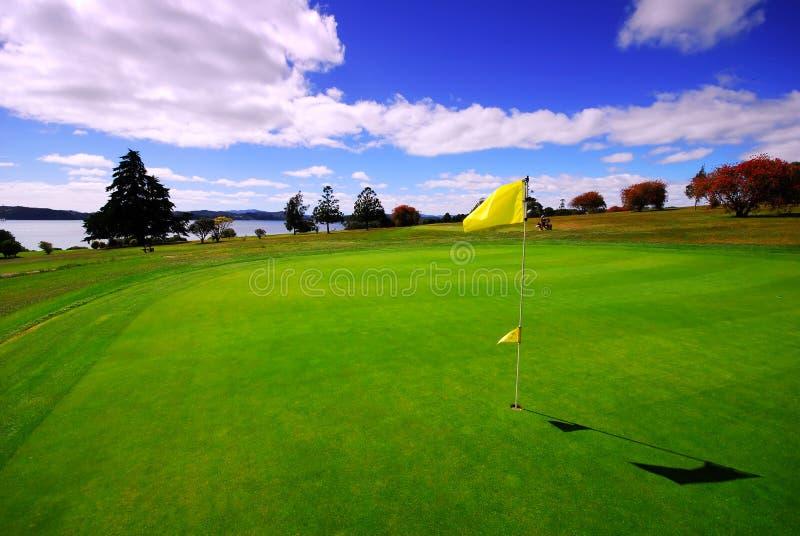 härlig golfgreen royaltyfria bilder
