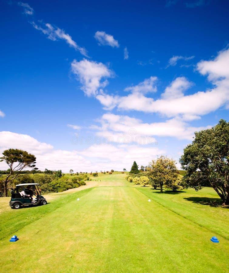 härlig golfgreen arkivbild