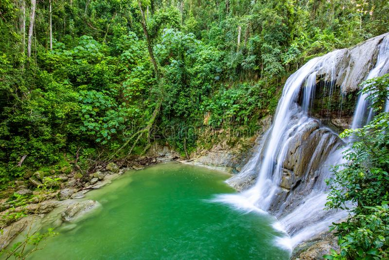 Härlig Gozalandia vattenfall i San Sebastian Puerto Rico royaltyfri foto